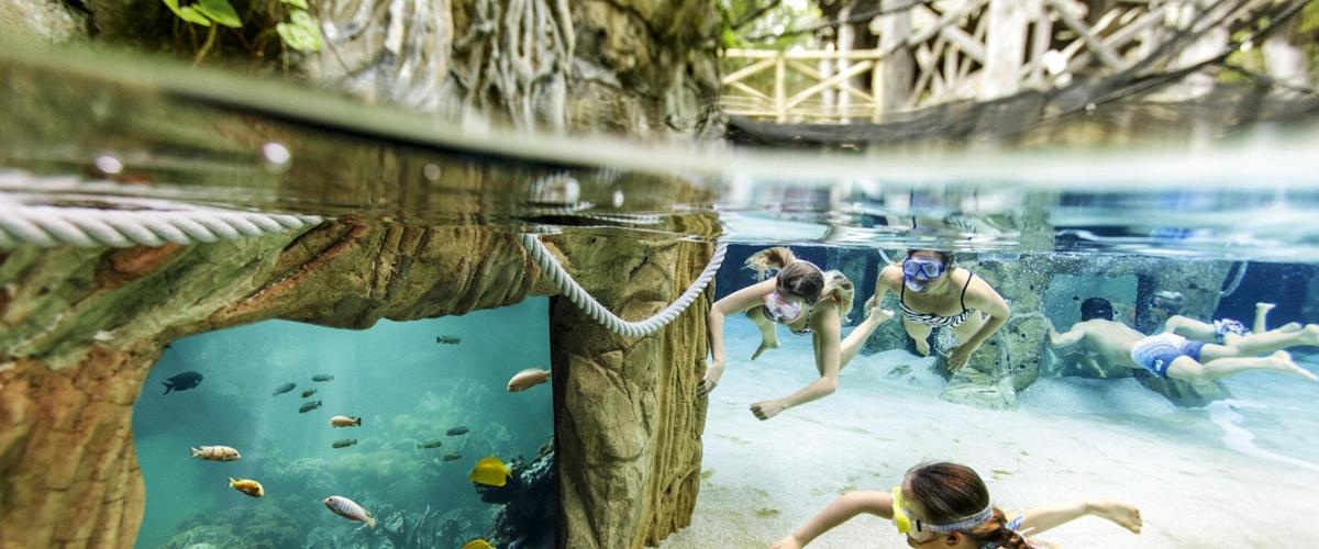Grabbelpas: Zwemmen in Aqua Mundo