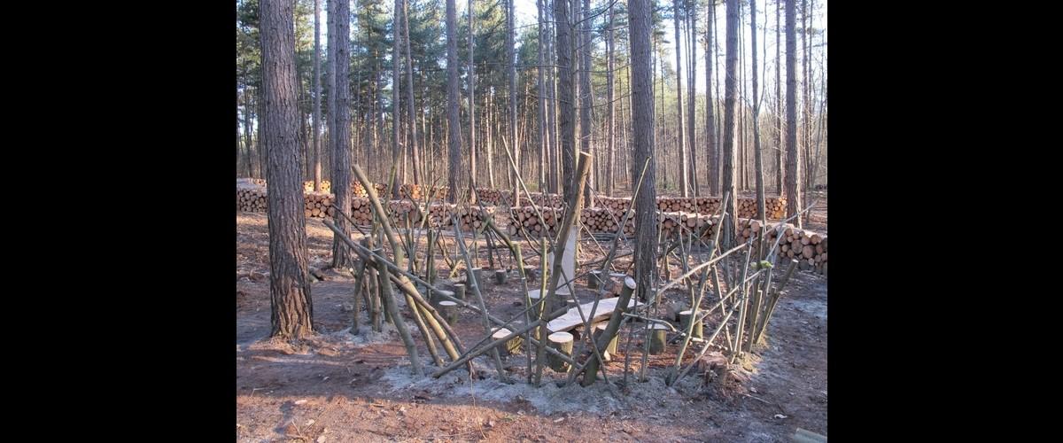 Week van het bos: ravot je rot!